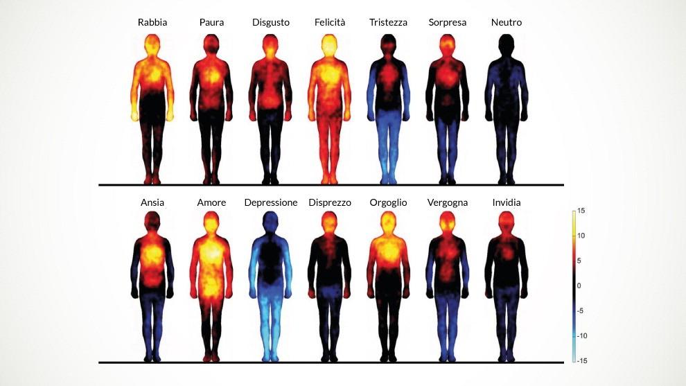 Psicosomatica: mappa emozioni e organi del corpo